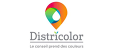 Districolor Google Ads
