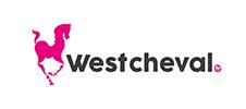 West Cheval Google Ads Le Mans